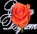 Уральская роза «Вау» 50 см