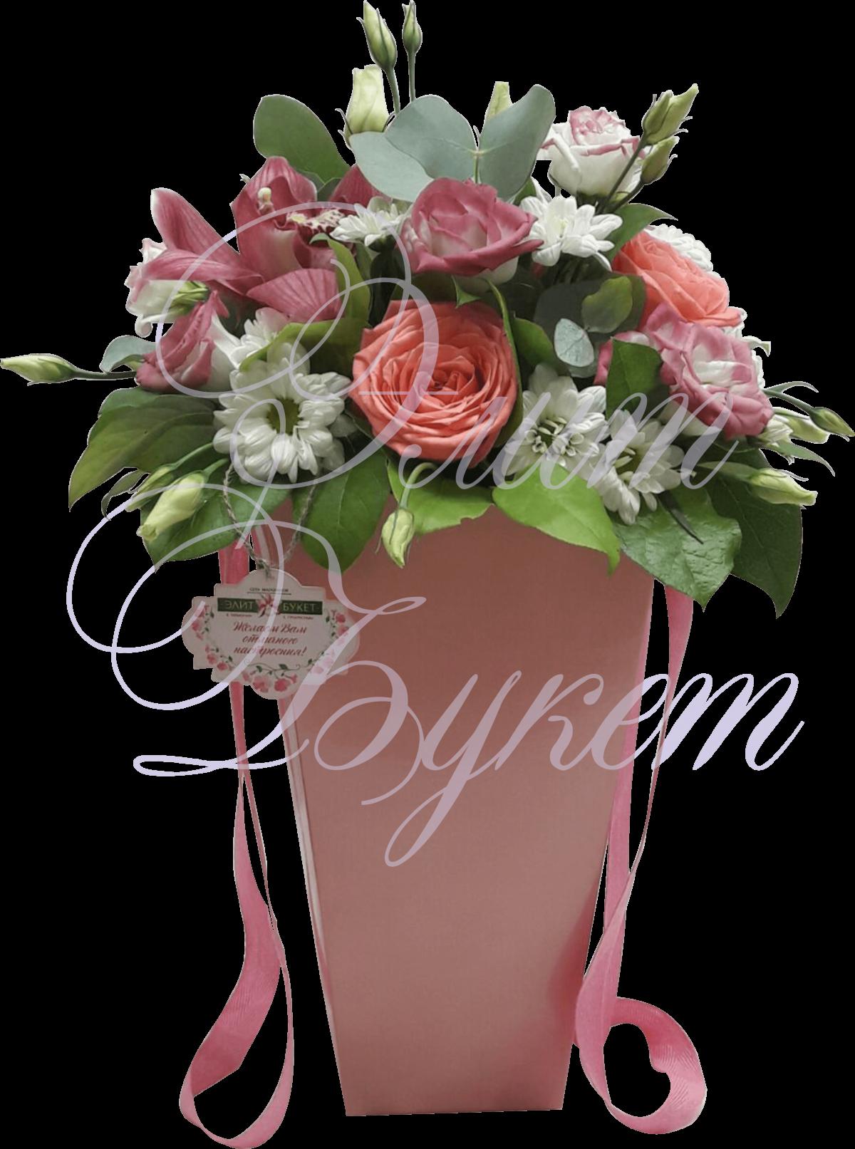 Комнатные растения и цветы и названием