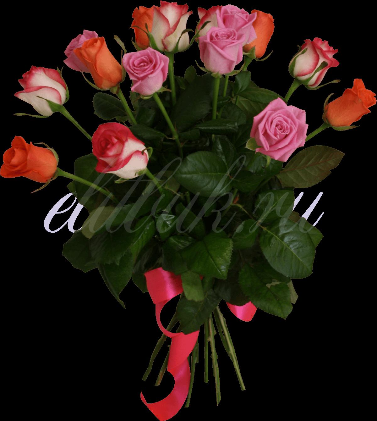 уральская роза купить в екатеринбурге из теплицы