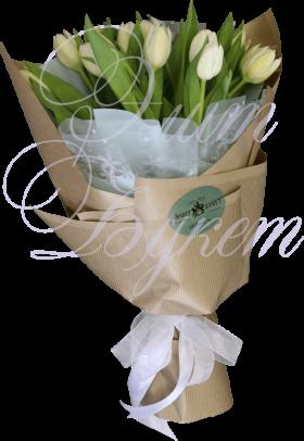 11 тюльпанов «Нежное Утро»