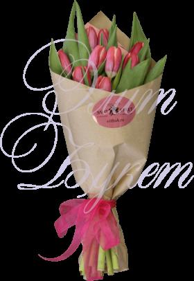 11 тюльпанов «Комплимент»