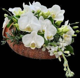 «Игра в цветы»
