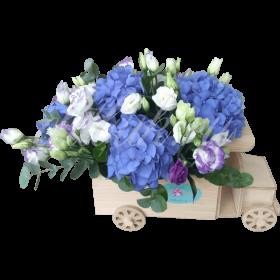 «Авто-малютка»