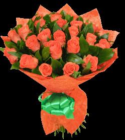 «Любовь-морковь»