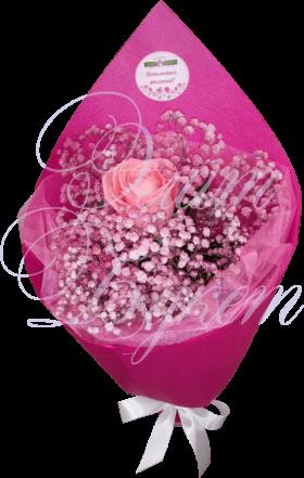 «Розовое счастье»