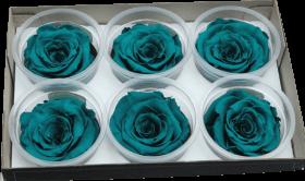 Стабилизированный цветок - Бирюзовая роза