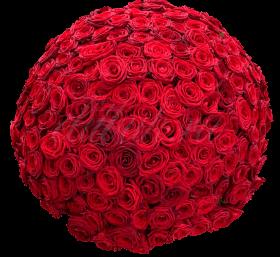 «Страсти по красному»