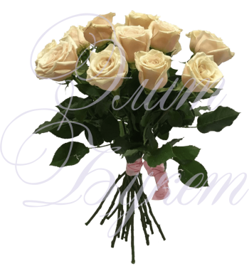 15 роз «Сахара» без упаковки