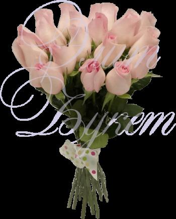 19 розовых роз «Розовый десерт»