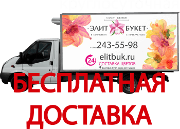 Бесплатная доставка от 2000 рублей
