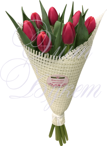 «Желаю счастья» 7 тюльпанов