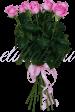 11 роз «Аква»