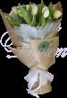 11 шт тюльпанов в упаковке