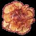 Гвоздика кремовая с бордовой каймой