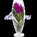 Орхидея Ванда розовая