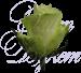 Роза Кения белая 40 см