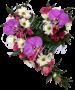 Сердце из цветов «Всегда любима»